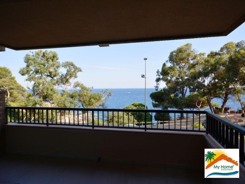 APARTMENT WITH PARKING AND MARVELLOUS SEA VIEW IN CALA BANYS